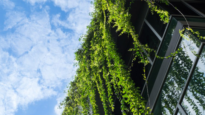 How green buildings will help save the world