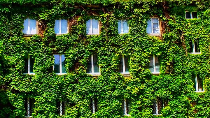 Greener buildings can tackle climate change